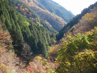逆川の渓谷風景