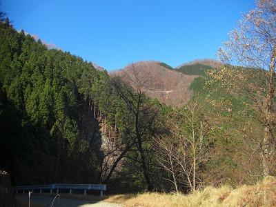 逆川林道を望む