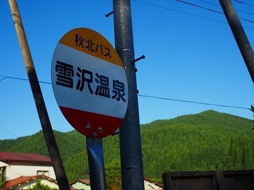 akita04 (9)